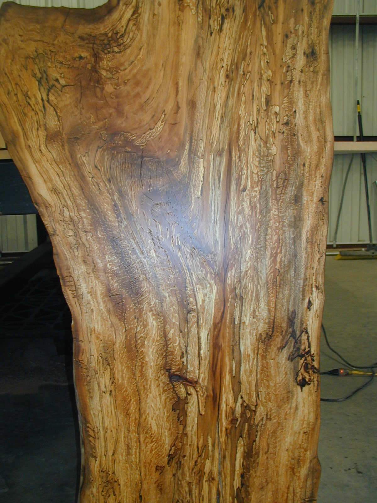 after-odie's-oil-wood.jpg